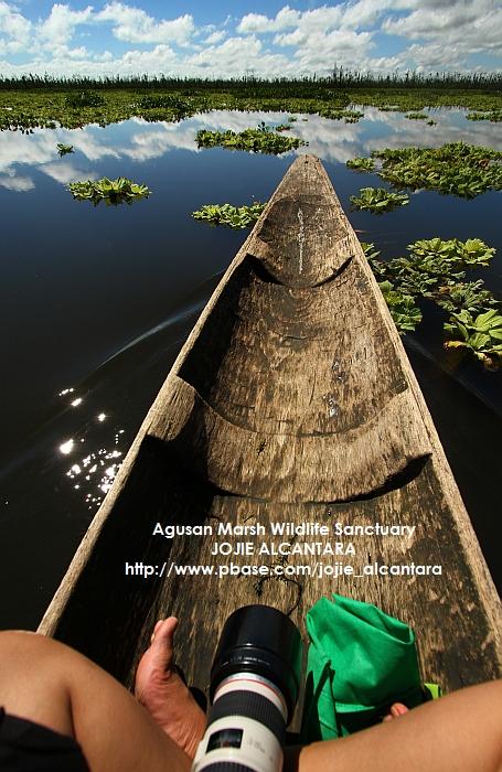 Riding a banca in the marshland of Agusan © Jojie Alcantara