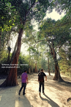 The scenic trail to Ta Phrom temples