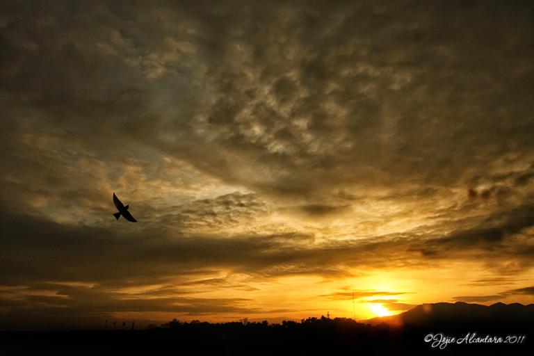 Sunrise in Cagayan de Oro  © Jojie Alcantara