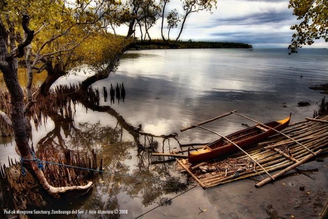 Pod ok Mangrove Boardwalk Zamboanga del Sur by Jojie Alcantara