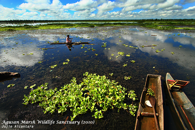 Lake Kaningbaylan, Loreto, Agusan Marsh by Jojie Alcantara