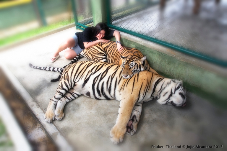Jojie Alcantara in Tiger Kingdom