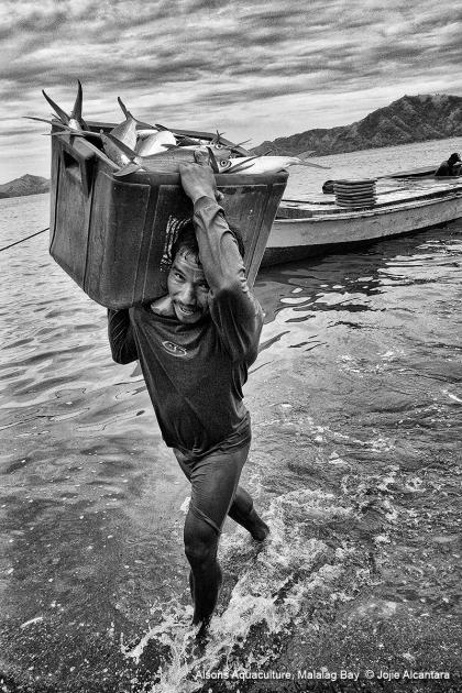 Fisherman in Malalag Bay © Jojie Alcantara