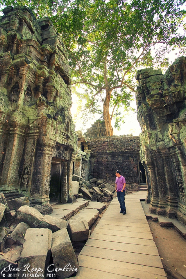 Ta Phrom, Siem Reap, Cambodia   © Jojie Alcantara