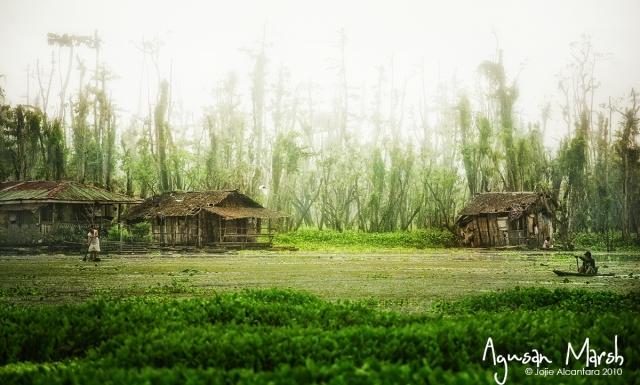Lake Kaningbaylan, Agusan Marsh © Jojie Alcantara