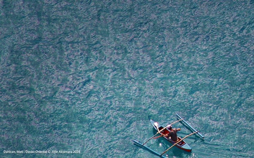 Aerial Dahican from an ultralight plane  © Jojie Alcantara