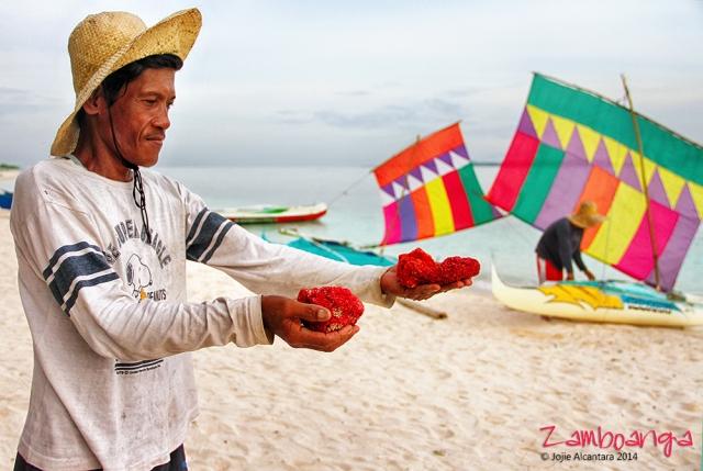 Pink sands of Sta.Cruz, Zamboanga © Jojie Alcantara