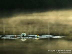 Mt. Apo Highland Resort © Jojie Alcantara